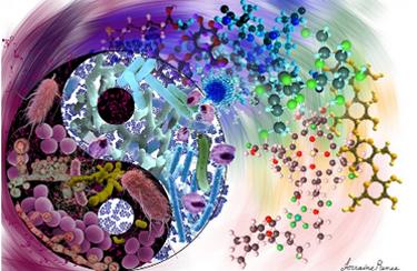 Gut-Microflora