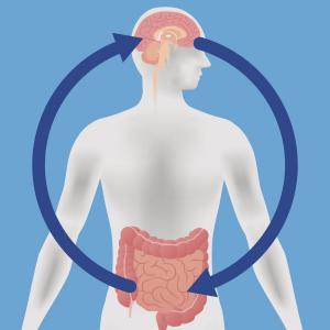 gut flora health